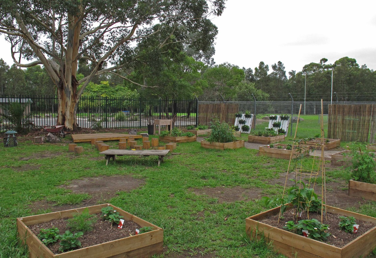 The garden at Chipping Norton Public School.
