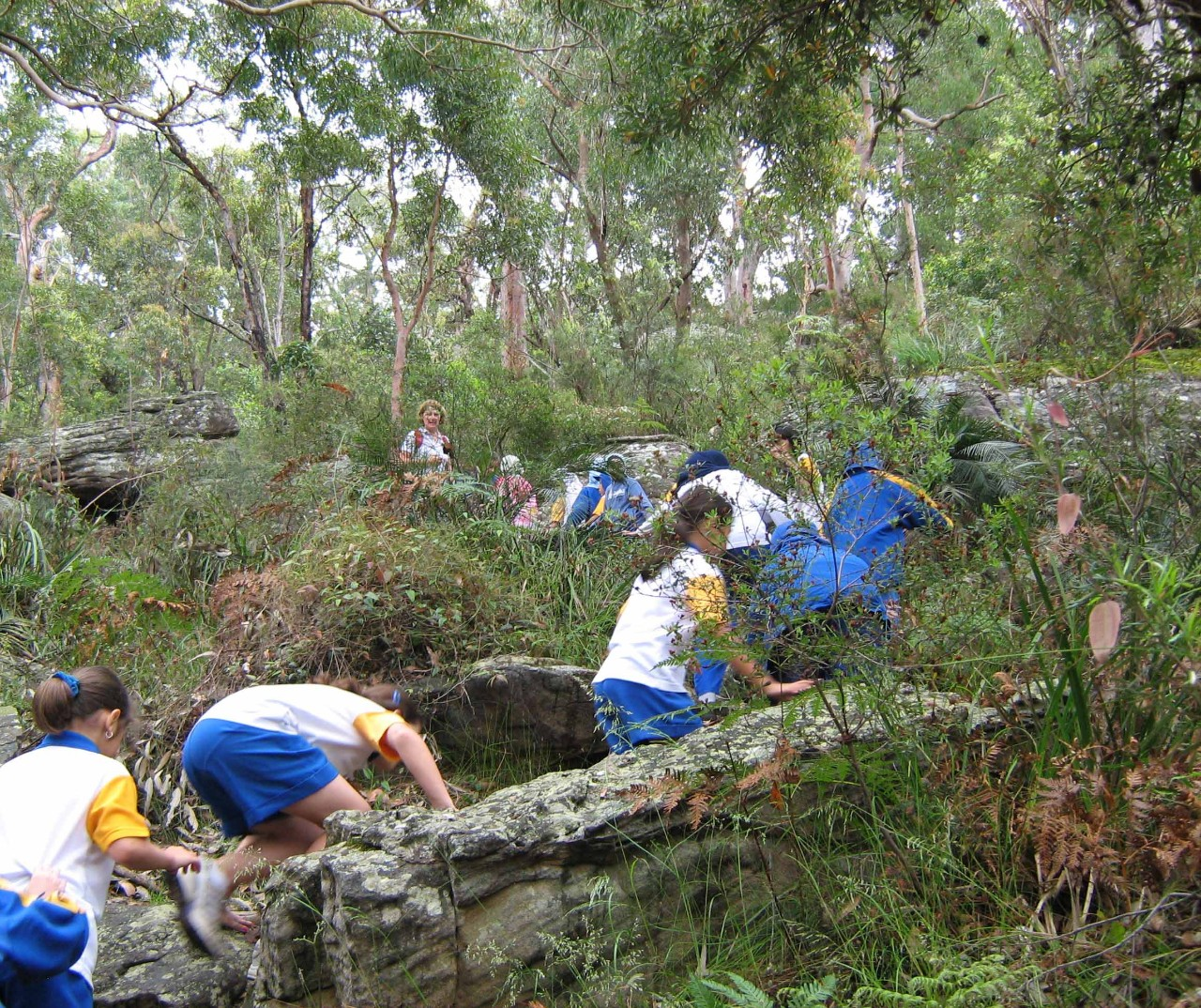 Students at Georges River National Park